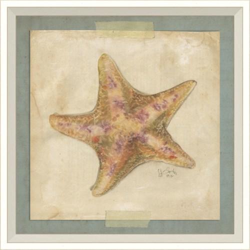 WC Starfish 4