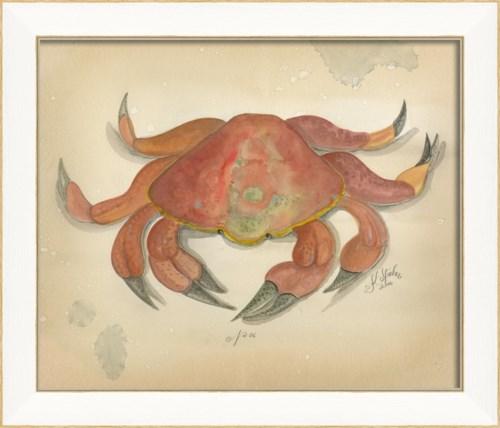SS Ocean Crab 06