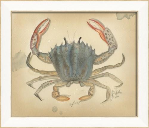 SS Ocean Crab 08