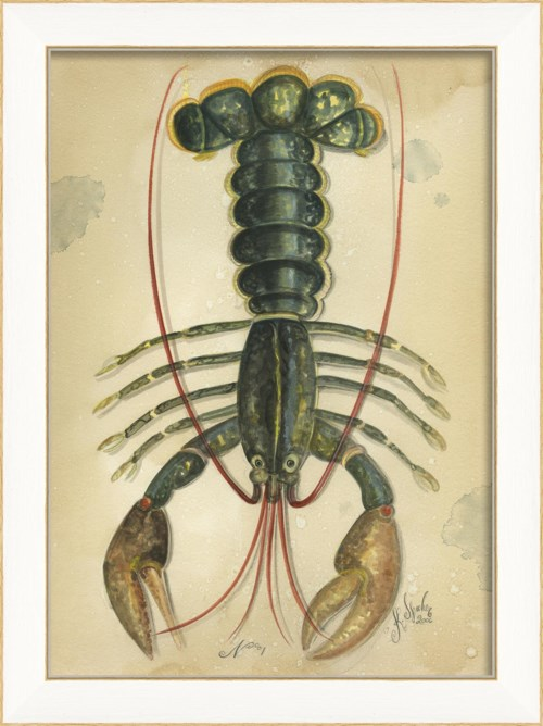 SS Ocean Lobster 01