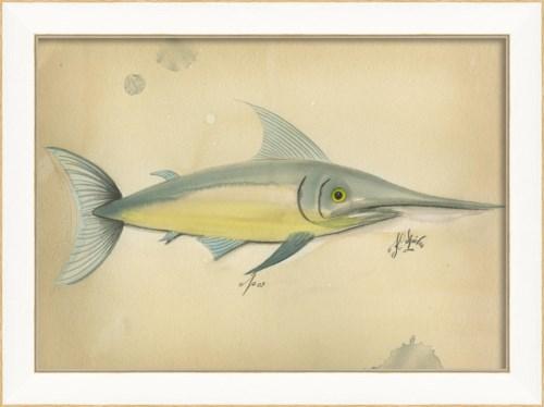 SS Ocean Swordfish 09