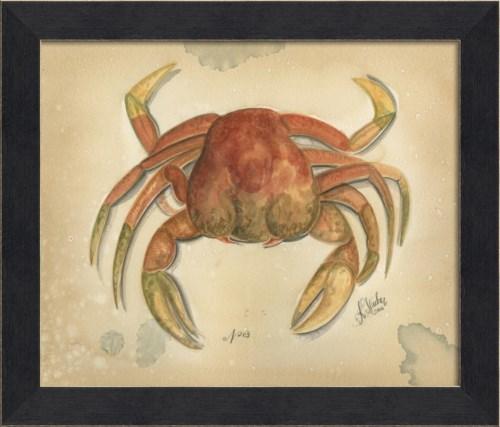 MI Ocean Crab 03