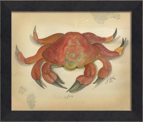 MI Ocean Crab 06