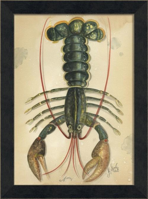MI Ocean Lobster 01