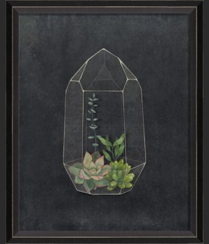 BC Terrarium A Wonderful Future sm