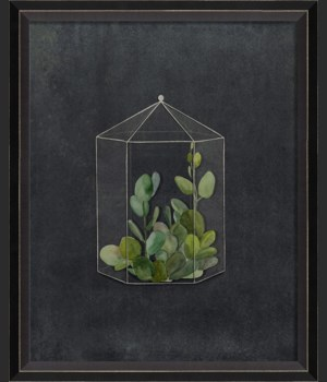 BC Terrarium Infinite Security sm