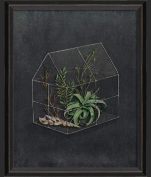 BC Terrarium The Beauty of a Garden Bed sm