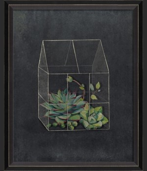 BC Terrarium The Night Side of the Earth sm