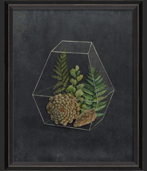 BC Terrarium The Onrush of Scenery sm