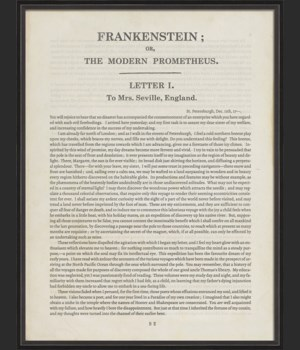 BC Literature Frankenstein