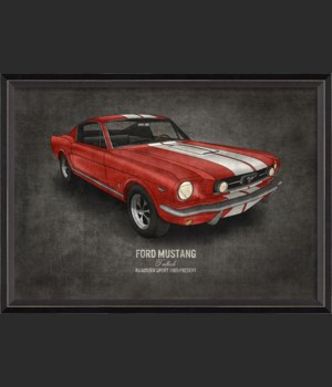 BC Ford Mustang 17x24
