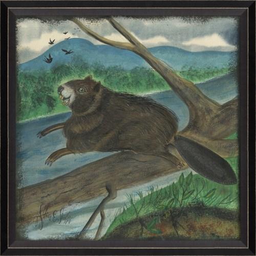 BC Beaver