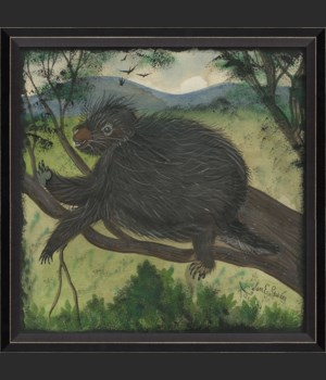 BC Porcupine