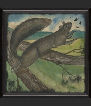 BC Squirrel