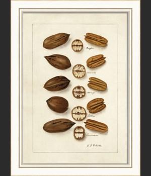 KI Nuts No3