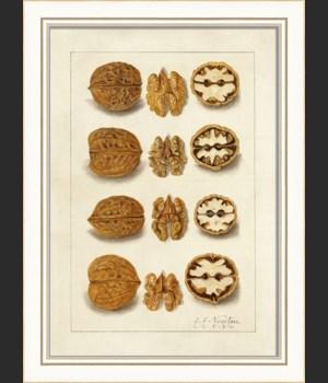 KI Nuts No5