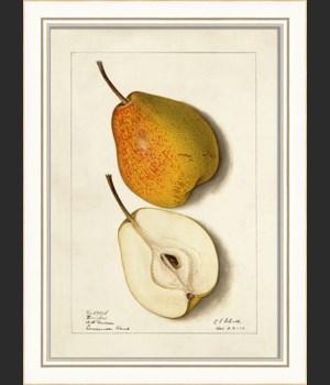 KI Pear No5