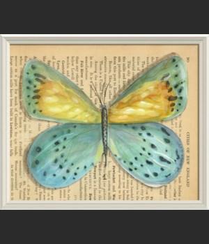 WCWL Butterfly1