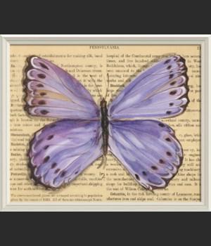 WCWL Butterfly2