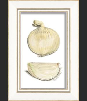 KI White Onions