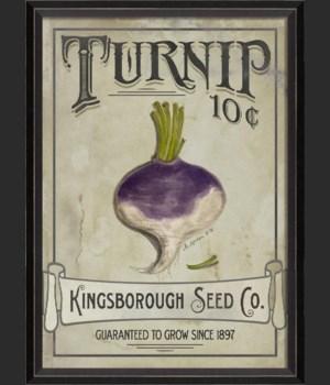 BC Turnip Seeds