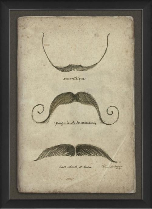 EB Moustache 1