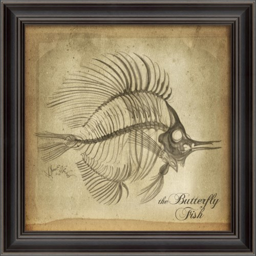 LS Butterfly Fish Skeleton on White