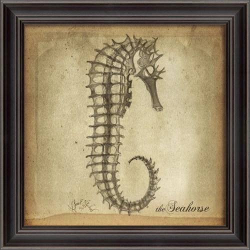 LS Seahorse Skeleton on White