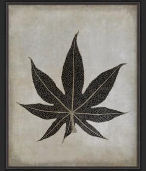 BC Caster Leaf b/w lg