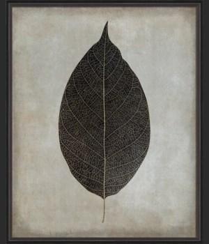 BC Leaf No3 b/w lg