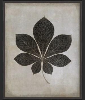 BC Leaf No4 b/w lg