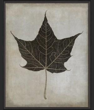 BC Maple Leaf No3 b/w lg