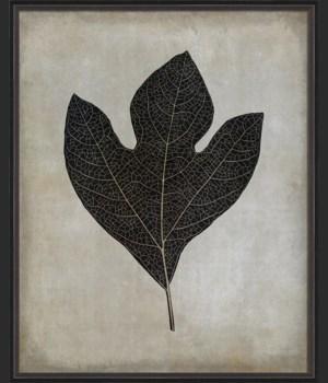 BC Sassafras Leaf b/w lg