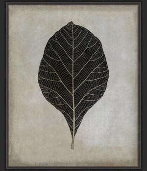 BC Teak Leaf b/w lg