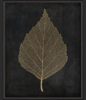 BC Birch Leaf gold on black lg