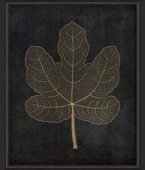 BC Fig Leaf gold on black lg