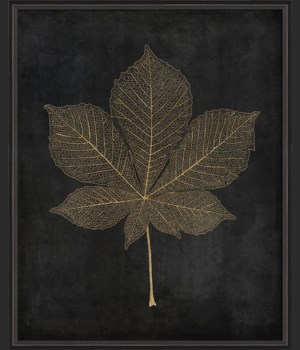 BC Horse Chestnut Leaf gold on black lg