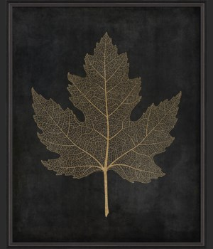 BC Maple Leaf No2 gold on black lg