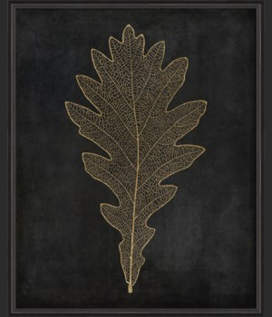BC Oak Leaf gold on black lg