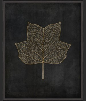 BC Tulip Tree Leaf gold on black lg