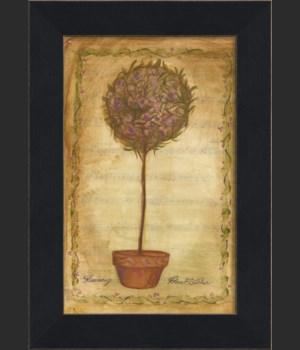MI Rosemary Topiary