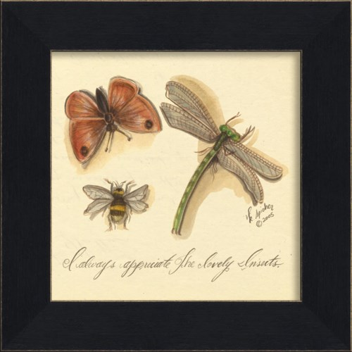 MI Lovely Insects