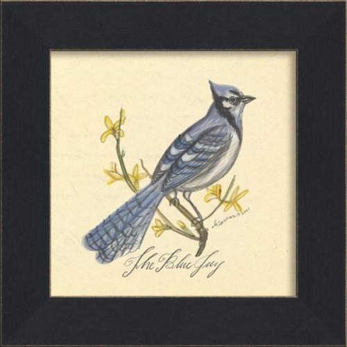 MI Blue Jay