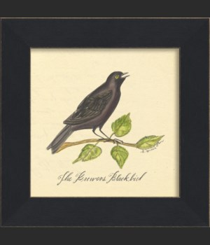 MI Brewers Blackbird