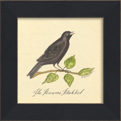 MI Brewers Blackbird
