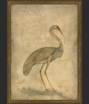 KG White Bird