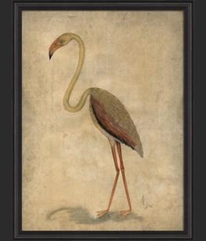 BCBL Pink Bird