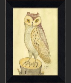 MI Owl 02