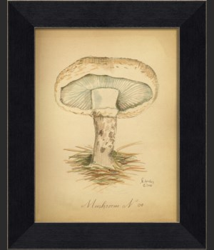 LI Mushroom 04