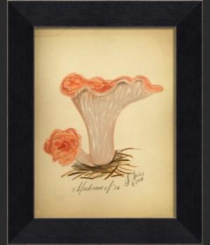 LI Mushroom 06